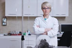 kvinnlig veterinär foto