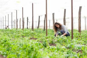 kvinnlig plantagearbetare foto