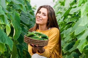 ung kvinnlig grönsaksträdgårdsarbetare foto