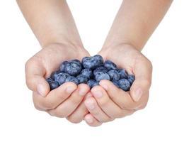 kvinnliga tonårshänder som håller mogna blåbär foto