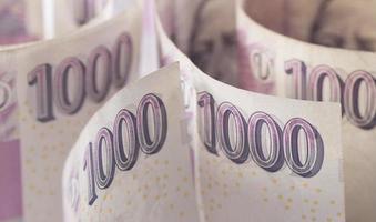 tjeckiska pengar foto