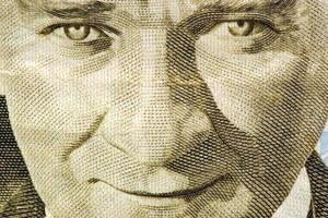 pengar kalkon på nära håll