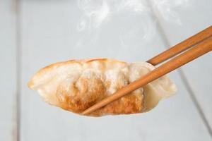 asiatisk mat pan stekt dumplings foto