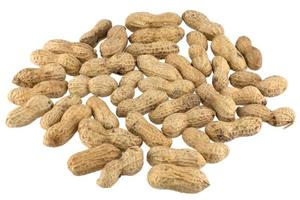 många jordnötter foto