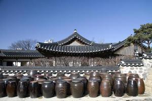kimchee foto