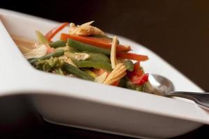 thailändsk röd curry kyckling foto