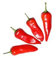 fyra röda varma chilipeppar foto