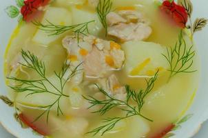 tallrik med kyckling soppa
