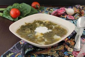 grön borscht med nässlor och gräddfil foto