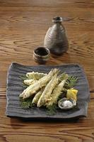 tempura av ett damm smälter foto