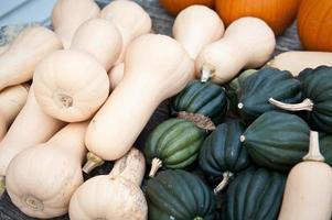 butternut squash, ekollon squash och pumpor foto