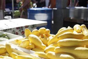 gul zucchini squash foto