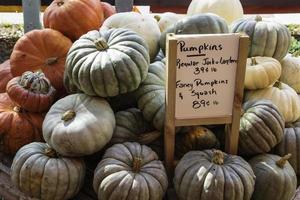 pumpor och squash till salu på bondemarknaden foto