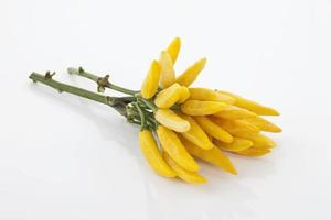 färska gula chili på stammen på vit bakgrund foto