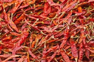 torr chili på marknaden i Nepal foto