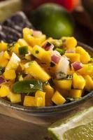färsk hemlagad mangosalsa foto