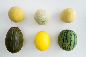 samling av meloner foto