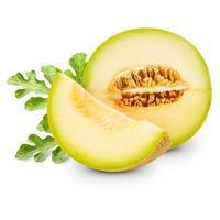 melon foto