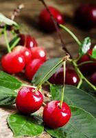 färska körsbär med blad