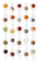 olika kryddor isolerad på vit bakgrund foto
