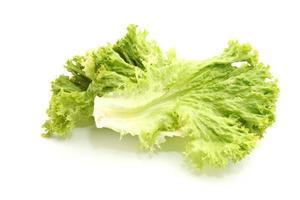gröna blad sallad foto