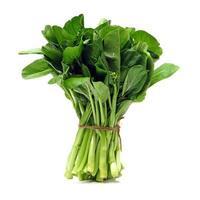 grön grönkål foto