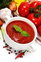 traditionell tomatsoppa foto