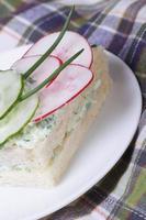 dubbel smörgås med gurka, rädisa närbild vertikalt foto