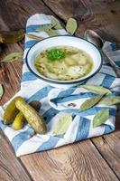 soppa med inlagd gurka foto