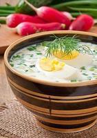kall grönsakskefir soppa med ägg och gröna foto