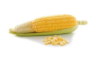 gul majs med blad på vit bakgrund foto