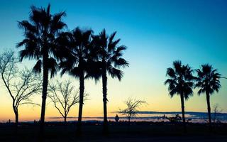 kalifornien solnedgång foto
