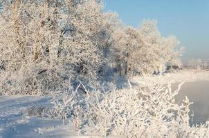 flod vintern foto