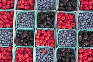 jordgubbar blåbär björnbär foto