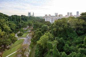 grön stad foto