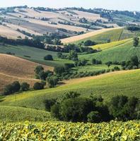 marscher (Italien): sommarlandskap