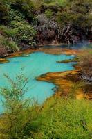 naturlig pool foto