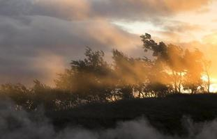 varm dimma ovanför geotermiska fjädrar i motljus
