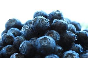 mogna blåbär i en skål. foto
