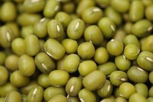 grön torkad bönseds makro foto