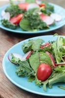 färsk grön sallad. foto