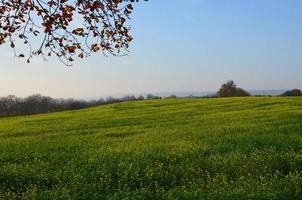 höstligt landskap foto