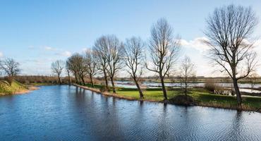 idylliska holländska landskap foto