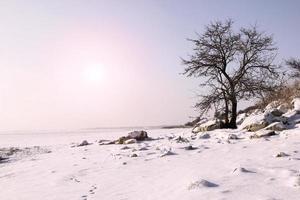 vinterlandskap vid solnedgången