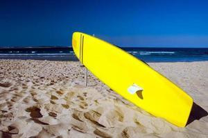 surfa foto