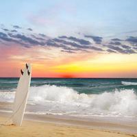 surfing foto