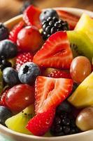 helig organisk fruktsallad foto