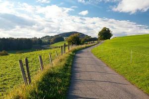 mountan landskap med väg