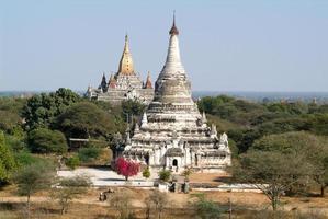 Tabaya och ananda templer på den arkeologiska platsen för Bagan foto