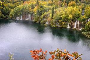 faller på hösten foto